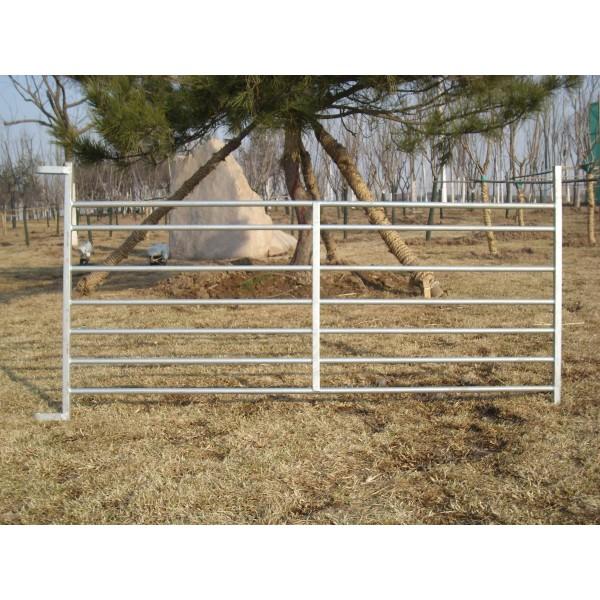 6ft D loop Lambing hurdles