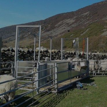 Sheep Handling Equipment in Penrith, Cumbria